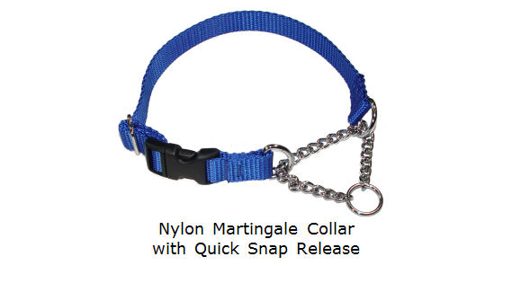 Martingale Chain Collars